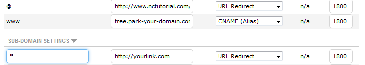Catch-all_(wildcard)_subdomain.png