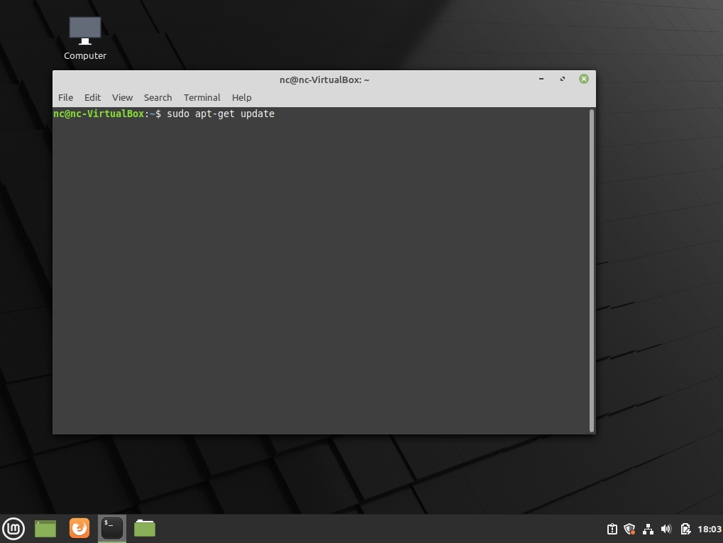 The Linux Mint terminal screen